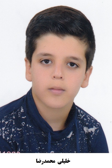 محمد رضا خلیلی